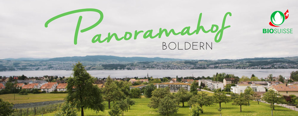 Panoramahof Boldern